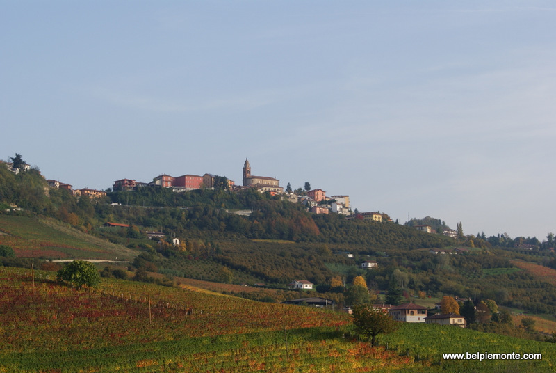 Diano d'Alba and its vineyards, Piedmont, Italy