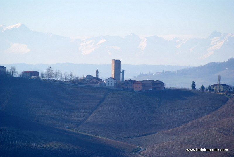 Barbaresco with the distant Alps in background