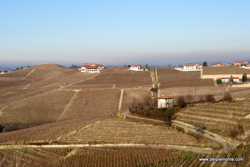the Langhe hills, Piedmont, Italy