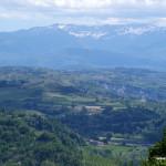 Langhe hills, Piedmont, Italy