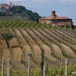 Barolo hills, Piedmont, Italy