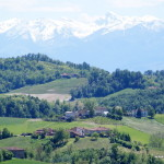 Cantina Clavesana, Piemonte, Italia
