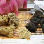 Alba International White Truffle Fair 2014, Alba, Piedmont, Italy