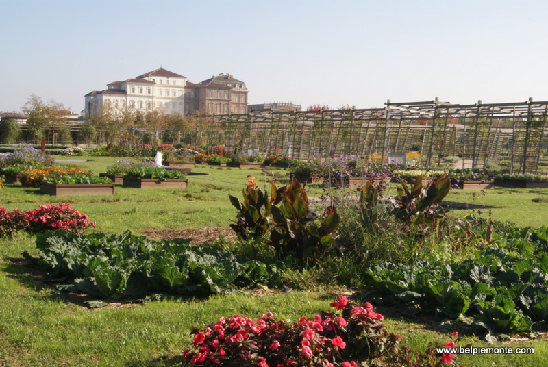 Venaria, the palace from herbal garden perspective