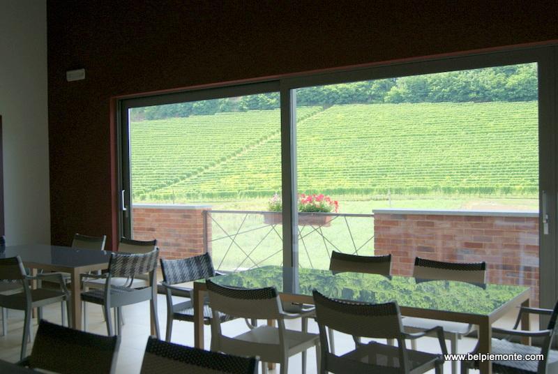 Demarie vineyard, Roero, Piedmont, Italy