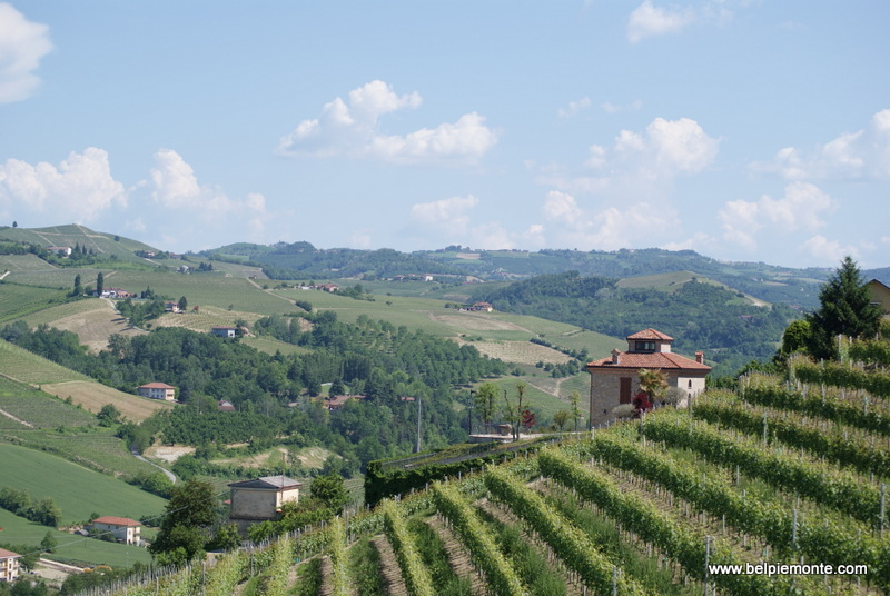 Langhe and Roero hills, Piedmont, Italy