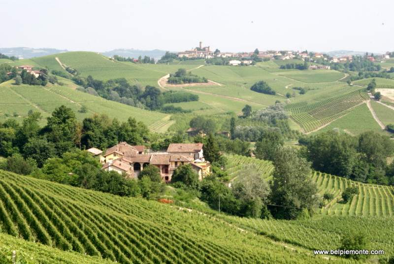 Langhe and Roero hills view, Piedmont, Italy