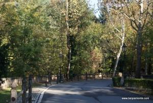 ulica dzieląca park otaczający zamek w Aglie'