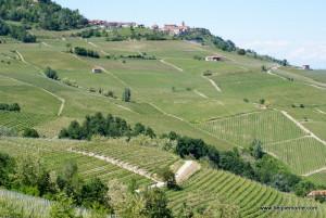 wzgórza Barolo, Piemont, Włochy
