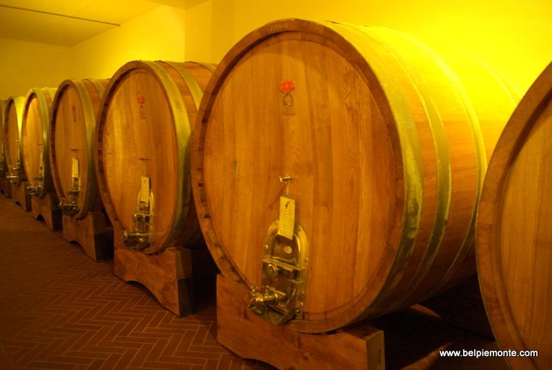 botti w winiarni Josetta Saffirio