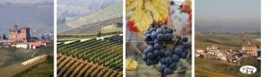 Bel Piemonte - jesień w Piemoncie, Włochy