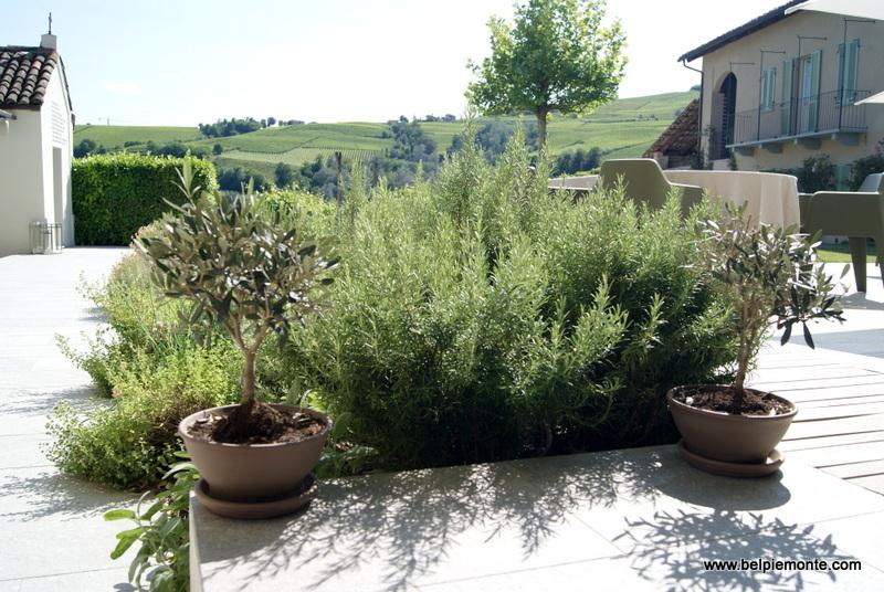 Palas Cerequio, La Morra, Piemont, Włochy